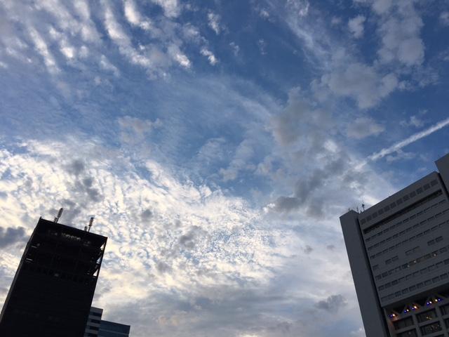 雲が面白い